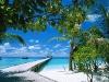 ari-atoll-maldives