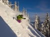 CMH-Heli-Skiing-Canada-RE-Dec-tree-pitch