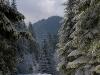 ski-in-poland-11