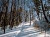 ski-in-poland-3