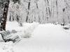 ski-in-poland-8