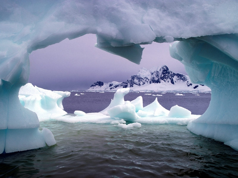 facts about Antarctica: Freeze em all