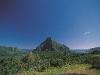 travel-to-tahiti-13