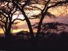 daybreak-tanzania-africa