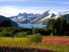 a-photographers-canvas-mendenhall-glacier-alaska