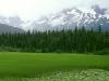 greener-pastures-moose-pass-alaska