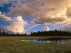 kettle-pond-interior-alaska