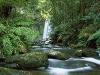 hopetoun-falls-aire-river-otway-national-park-victoria-australia