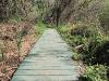 resized_creek-trail-peters-canyon-orange-county-ca