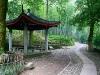 resized_bamboo-world-park-in-hangzhou-china