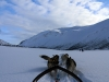 Dog sledding with huskies in Tromso Norway