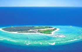 Lady Elliot island, Queensland- Australia